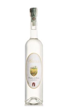 Grappa di langa dei produttori di govone, vini tipici piemontesi in provincia di cuneo