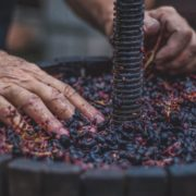 i vini rossi tipici piemontesi dei produttori di govone